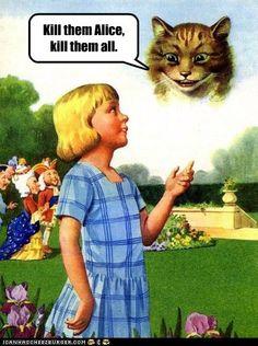 crazy cats, crazi cat, funni stuff, queens, funny pictures