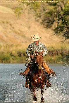 cowboy~~