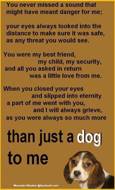 more than just a dog. Made me cry