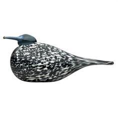 ittala bird