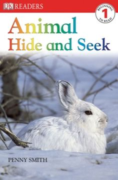 Some animals have clever ways of keeping themselves safe from predators: Animal Hide and Seek
