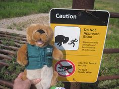Ollie and his friends the Jorgensons know to obey park signs. They didn't get too close to the bison!