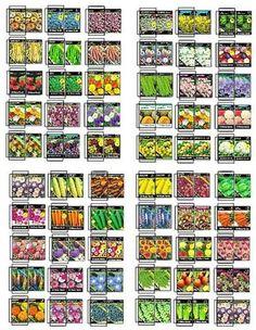 Casa de mu ecas imprimibles jardineria photo 4 of 6 - Jardineria en casa ...