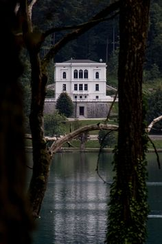 The isolation of this house, and its stark contrast to the deep, dark greenery around it. LOVE IT.