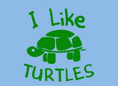 for the turtle lover in the family :)