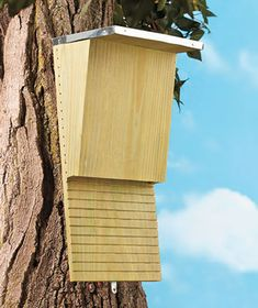 Bat house -- natural insect control.