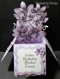 POP-UP BOX BIRTHDAY CARD by: carolynshellard