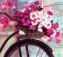 Bike & flowers