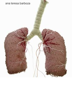 knit, woven and embroidered lungs by Ana Teresa Barboza