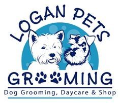 how to open a pet daycare business