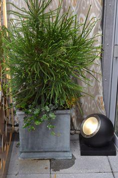 Featured: Beluga Alu Floor Spotlight   by Fabbian