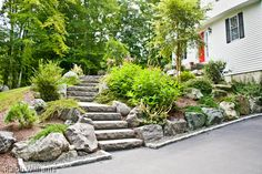 Granite Steps and plantings