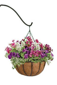 hanging+flower+baskets   Hanging Flower Baskets