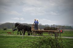 Taken in New Castle, PA.  Beautiful Amish Country!