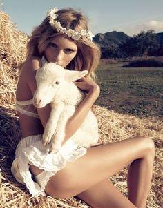 mary had a little lamb...