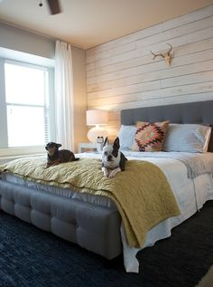 Love the aztec pillow and subtle southwestern flair... bed frames, beds, something old, new homes, plank walls, bedrooms, dog, accent walls, wood walls