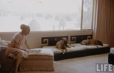 Vintage Life Photo from Scottsdale, AZ. Look at those dog beds!