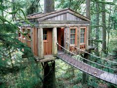 Stay in a tree house close to the base