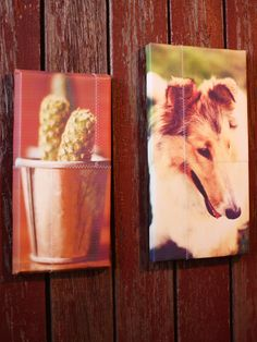How to Make Canvas Photo Art
