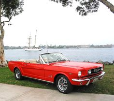 """63 convertible mustang. I know it's probably a weird thing to want, but I've always wanted a """"muscle car."""""""