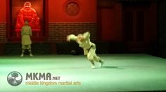 Shaolin Kung Fu Forms - Animal kung fu - Dog Boxing. #shaolin #kungfu