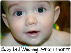 baby led weaning - Questions and Answers