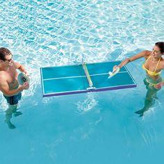 ping pong pool table