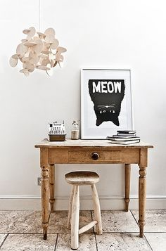 love the kitteh pic
