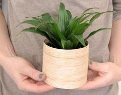 Pretty + Easy Wood Veneer Planters >> http://blog.diynetwork.com/maderemade/2013/02/28/diy-modern-veneer-planters/?soc=pinterest
