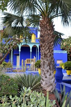 YSL house in Marrakesh... jardin, colors, blue houses, inspir, gardens, morocco, oasis, ysl hous, blues