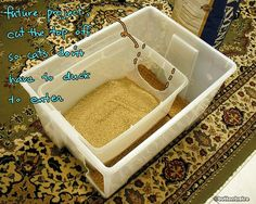 """Sweet! This would solve the tracking problem, and the """"cat who pees over the side of the litter box"""" problem! Homemade litter box by button bistro, via Flickr"""