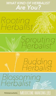 Think you know herbs? Test your herbal knowledge in the first quiz in the Medicine Making 101 Quiz Series! Find out if you are a rooting herbalist or blossoming herbalist!