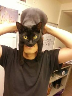 CATMAN: Guy Shows How To Look Like Batman Using Your Cat