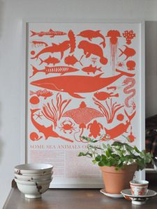 For the big boys' room, Gulf Coast Sea Animals Print. $60