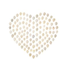 shell heart, white shell