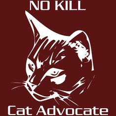 """No Kill Cat Advocate -  almost twice as many cats are killed at shelters as dogs - (many shelters report that they """"euthanize"""" 80 to 90% of all cats & kittens) - because they have no bottle baby foster program and no community TNR program -  they need us to speak up for them!"""