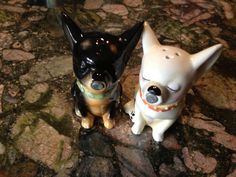 Unique Vintage Kissing Chihuahua Salt Pepper Shakers Magnet Mouth | eBay