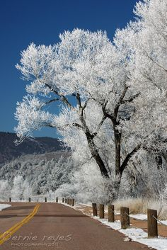 Colorado Springs I WILL move here one day!