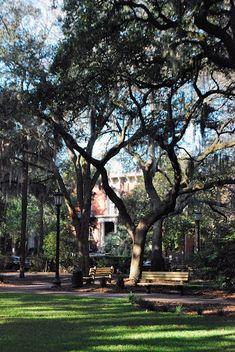 Beautiful - Savannah, GA