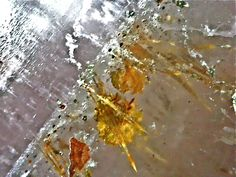 AURALITE Microscopic Photos