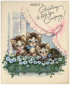 Here's a greeting to keep you company. #kittens #cats #cards #cute #vintage #illustrations