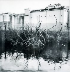 industrial branches