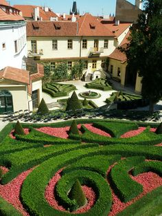 Nice vivid garden.