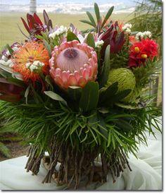Protea On Pinterest Maui Flowering Plants And Unusual