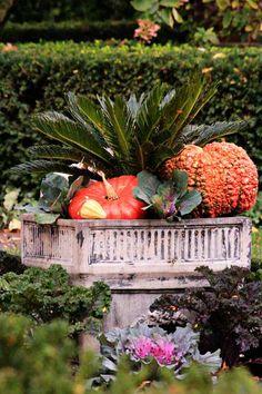 fall planters, pumpkin planter