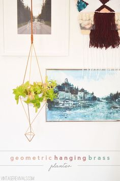geometric_hanging_brass_planter