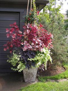 Amazing garden planter