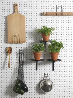 PEGBOARD—LORIS  My dad actually uses one for his tool shed. Why not have one in the kitchen?