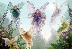 Image detail for -Fairies With Elves Pixies Pictures, Photos, Images & Graphics