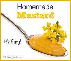 This basic homemade mustard recipe is much better than store bought and is perfect as a base for many other recipes. Tip: blend in herbs for a healthy kick!
